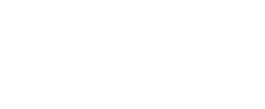 Video Production by Fallen Leaf Films Stanford University Client Logo