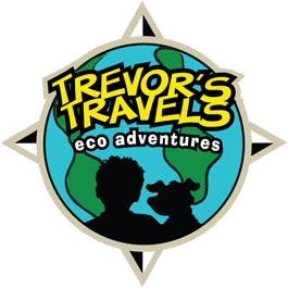 Trevor-Travels-Video-Testimonial Logo
